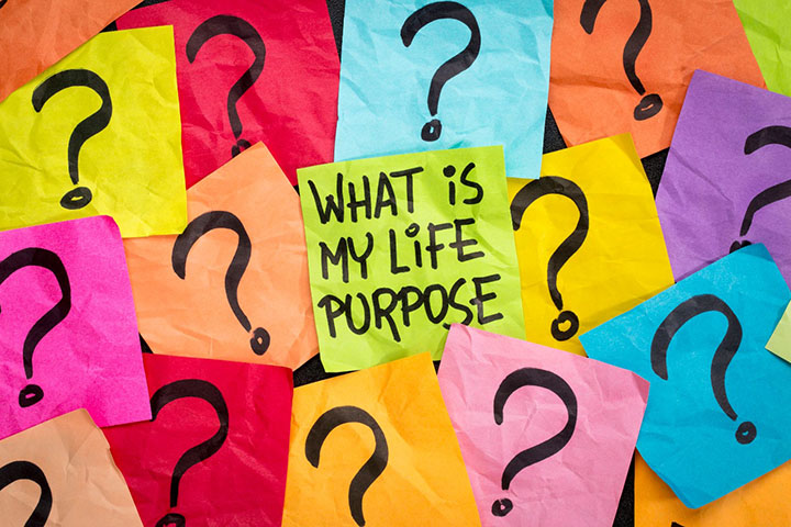 Purpose: The Why of It